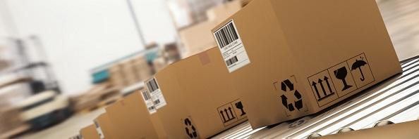 Livrare prin DPD cu Garantia de Livrare